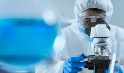 Обнаружена новая мутация коронавируса