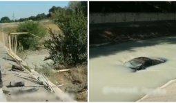 BMW вылетел с моста и затонул в Большом алматинском канале