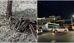 «Моя голова удар вынесла»: на алматинца упал троллейбусный кабель