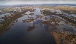 Экологи Нур-Султана прокомментировали скандал вокруг озера Малый Талдыколь