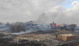 58 дачных участков сгорели в крупном пожаре в Степногорске