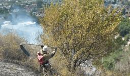 О пожаре в горах Алматы сообщили очевидцы