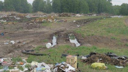 За стихийные свалки наказали чиновников в СКО