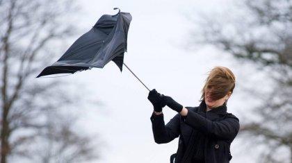 Сильный ветер ожидается в большинстве регионов