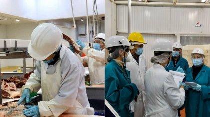 Китаю передадут отчеты с казахстанских мясоперерабатывающих предприятий