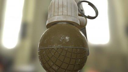 Боевую гранату подкинули на окраину села в СКО
