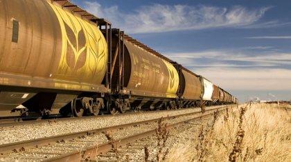Сотни тысяч тонн зерна и муки экспортировал Казахстан в октябре