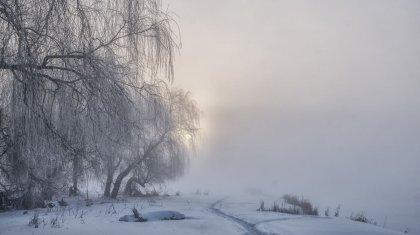 Синоптики объявили штормовое предупреждение в Шымкенте и шести областях Казахстана
