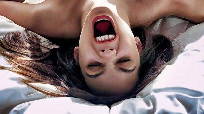 Соседи попросили женщину не визжать «как свинья» во время секса