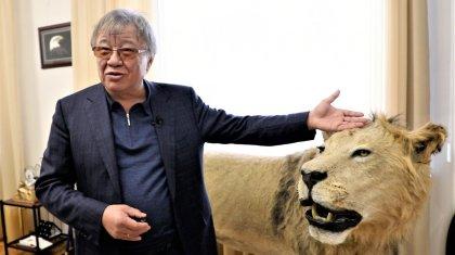 Лев, буйвол, кенгуру, рысь: президент академии туризма показал все свои трофеи