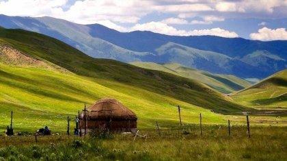 Запрет на аренду и продажу земли иностранцам: Парламент принял закон