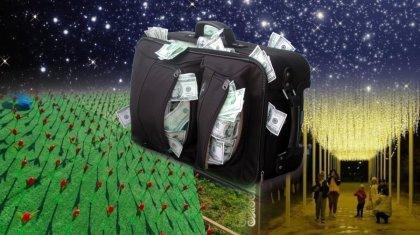 Десятки миллионов для фирмы-новичка: кто стоит за пластиковыми тюльпанами в Актау?